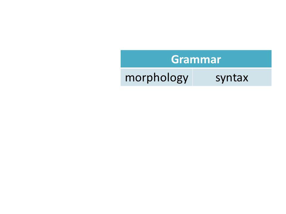Grammar morphologysyntax