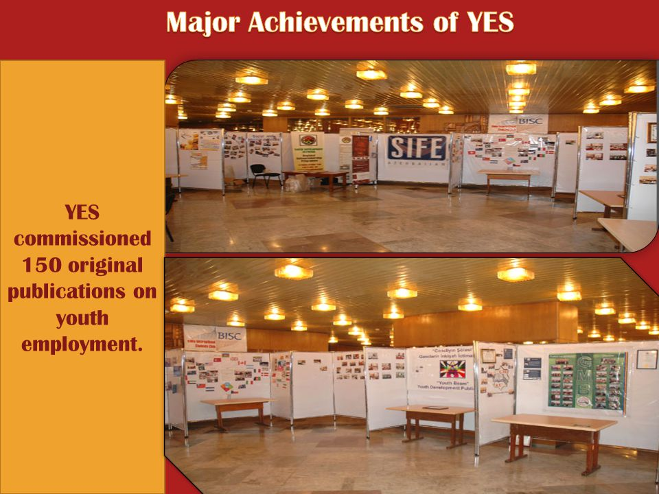 YES commissioned 150 original publications on youth employment.