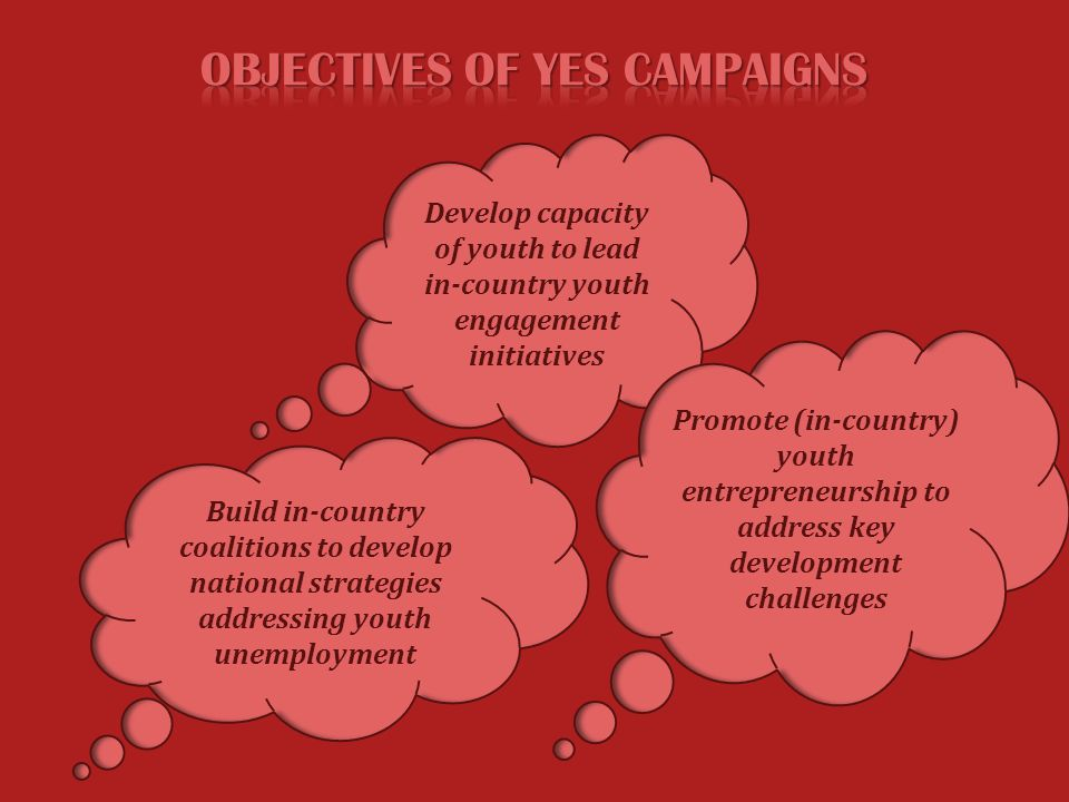 YES Organized 5 International Summits in Egypt, Mexico, Kenya, Azerbaijan and Sweden