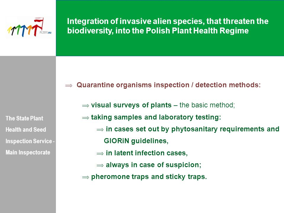 Integration of invasive alien species, that threaten the biodiversity, into the Polish Plant Health Regime The State Plant Health and Seed Inspection Service - Main Inspectorate  Quarantine organisms inspection / detection methods:  visual surveys of plants – the basic method;  taking samples and laboratory testing:  in cases set out by phytosanitary requirements and GIORiN guidelines,  in latent infection cases,  always in case of suspicion;  pheromone traps and sticky traps.