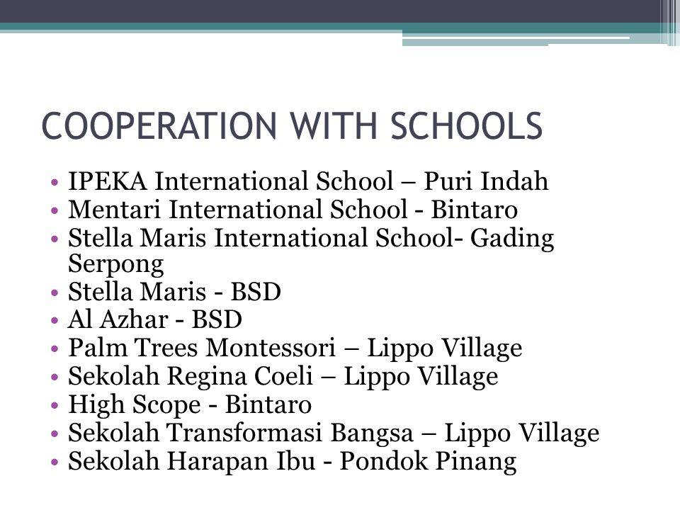 FUTURE BUSINESS PLAN 2014 – 2020 ▫GO International ▫Becoming School Partner All Over Indonesia