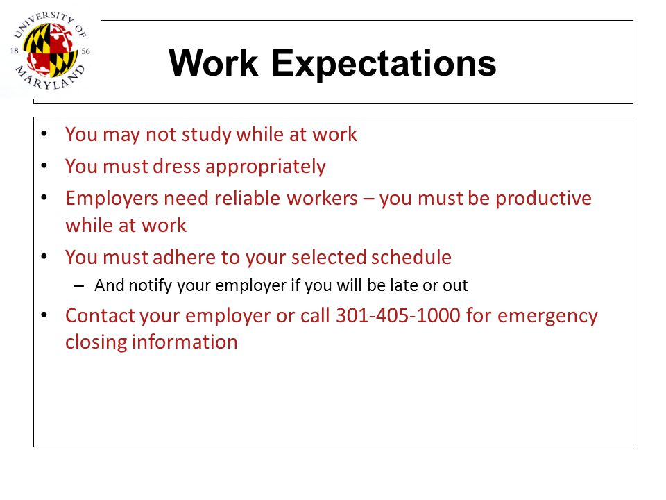 Work Expectations You may not study while at work You must dress appropriately Employers need reliable workers – you must be productive while at work