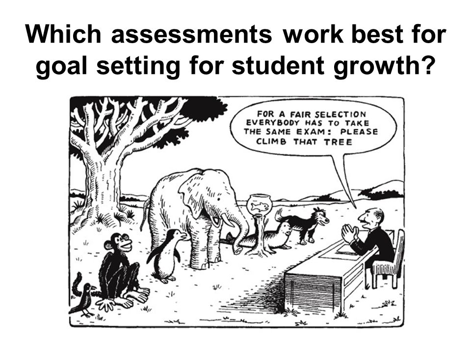 Which assessments work best for goal setting for student growth