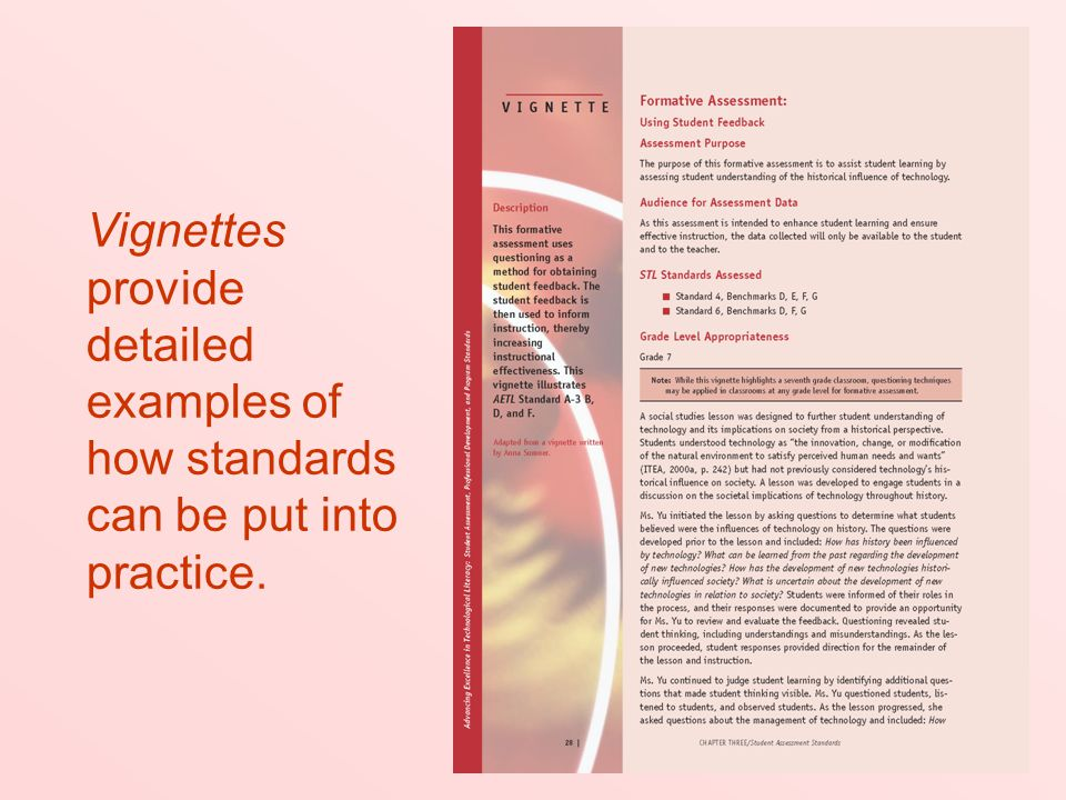 Vignettes provide detailed examples of how standards can be put into practice.