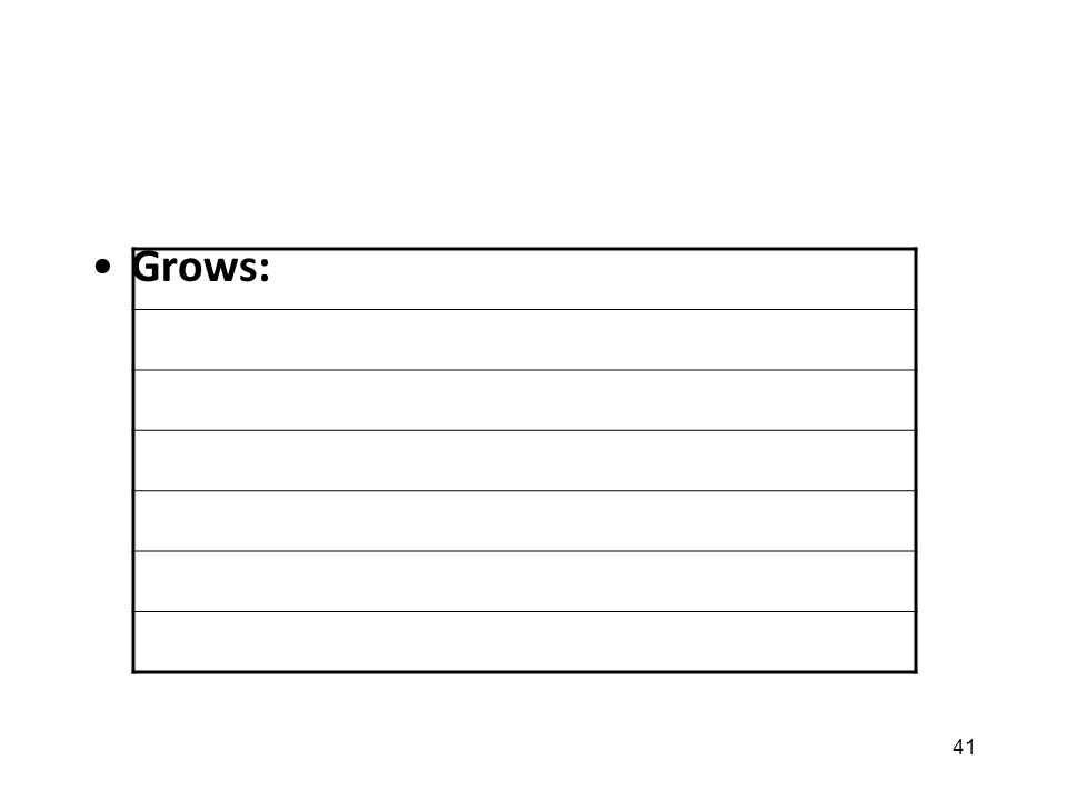 41 Grows: