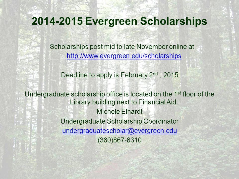2014-2015 Evergreen Scholarships Scholarships post mid to late November online at http://www.evergreen.edu/scholarships http://www.evergreen.edu/scholarships Deadline to apply is February 2 nd, 2015 Undergraduate scholarship office is located on the 1 st floor of the Library building next to Financial Aid.