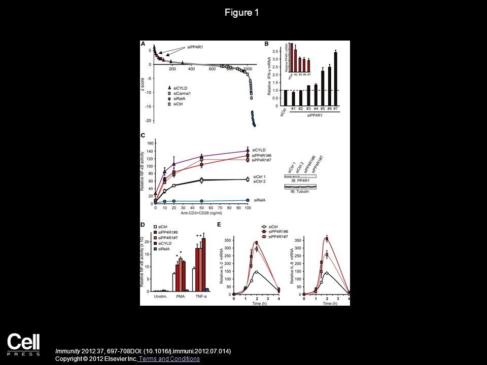 Figure 1 Immunity 2012 37, 697-708DOI: (10.1016/j.immuni.2012.07.014) Copyright © 2012 Elsevier Inc. Terms and Conditions Terms and Conditions