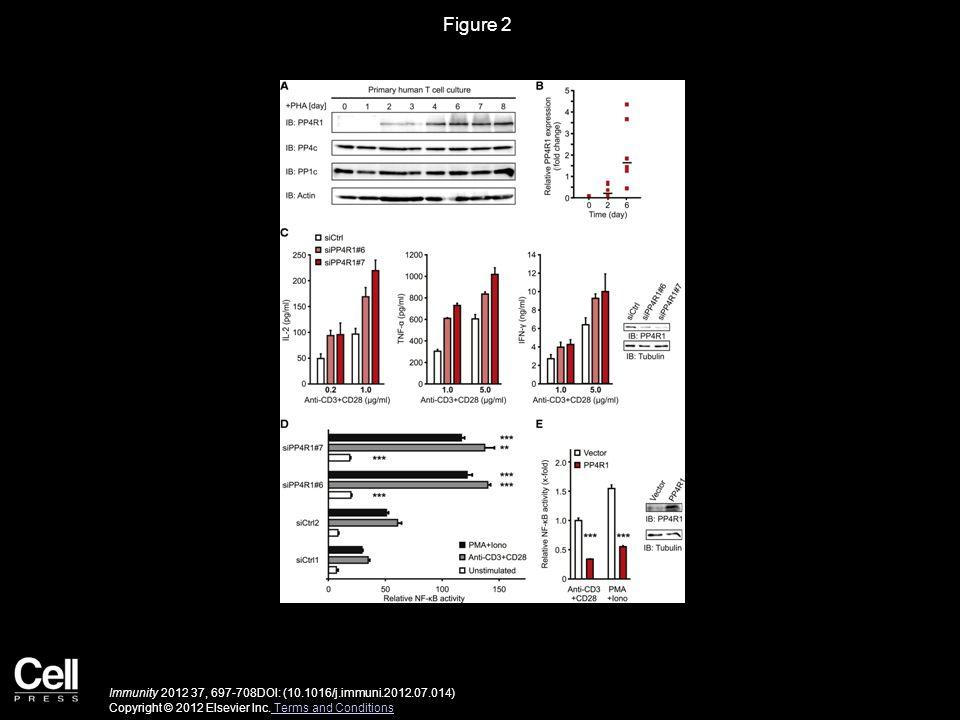 Figure 2 Immunity 2012 37, 697-708DOI: (10.1016/j.immuni.2012.07.014) Copyright © 2012 Elsevier Inc. Terms and Conditions Terms and Conditions