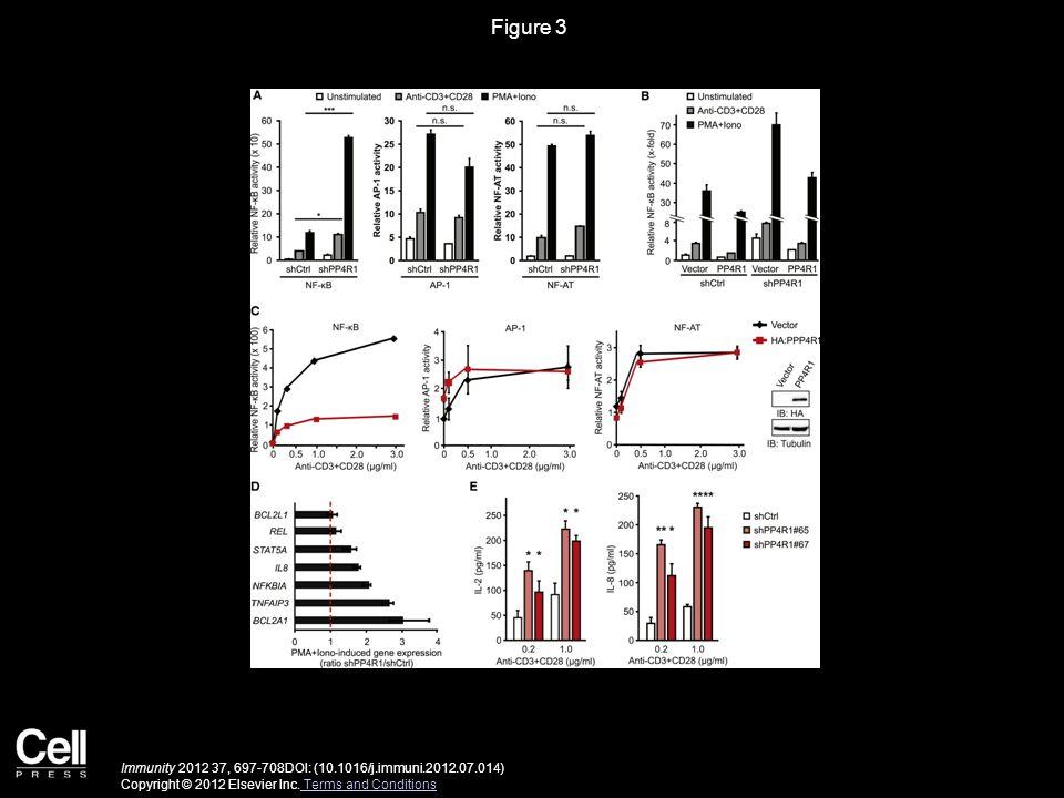 Figure 3 Immunity 2012 37, 697-708DOI: (10.1016/j.immuni.2012.07.014) Copyright © 2012 Elsevier Inc. Terms and Conditions Terms and Conditions