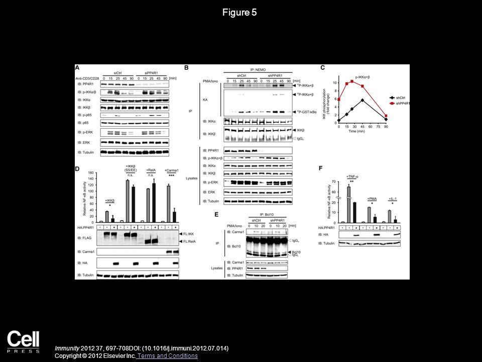 Figure 5 Immunity 2012 37, 697-708DOI: (10.1016/j.immuni.2012.07.014) Copyright © 2012 Elsevier Inc. Terms and Conditions Terms and Conditions