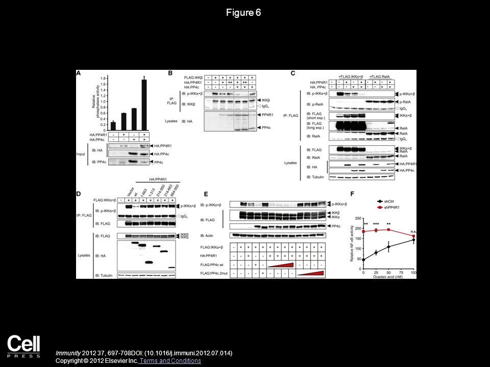 Figure 6 Immunity 2012 37, 697-708DOI: (10.1016/j.immuni.2012.07.014) Copyright © 2012 Elsevier Inc. Terms and Conditions Terms and Conditions