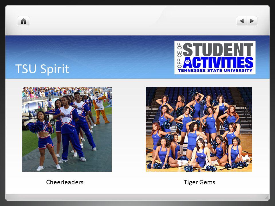 TSU Spirit CheerleadersTiger Gems