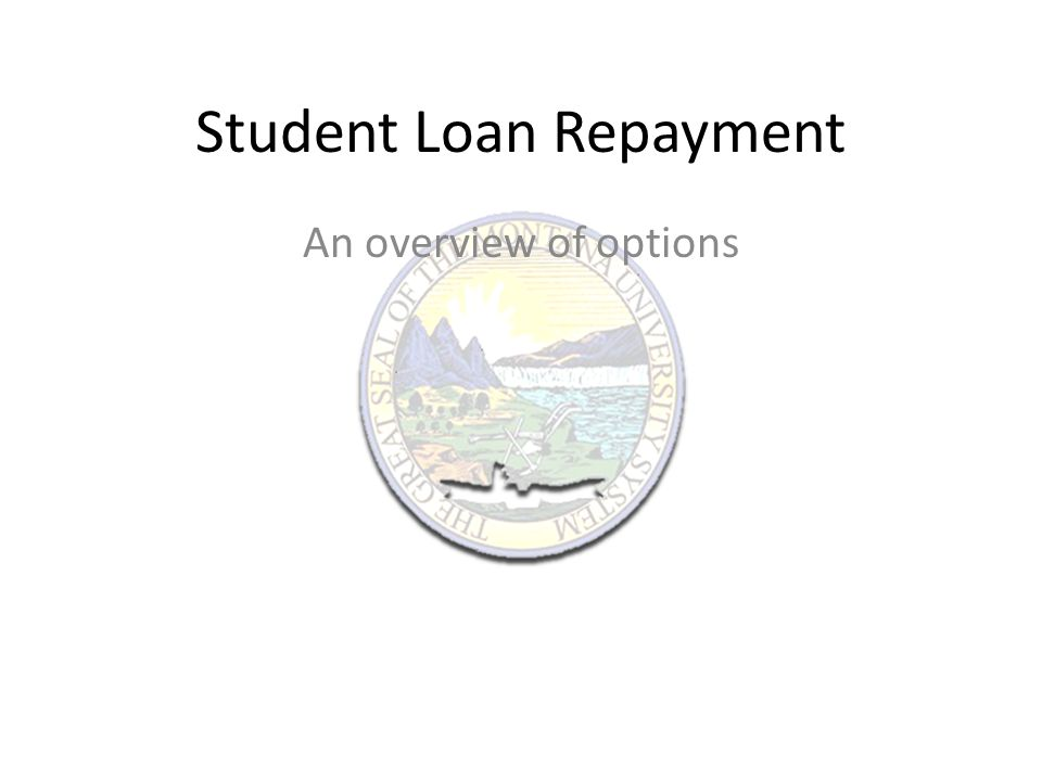 Student Loan Repayment An overview of options