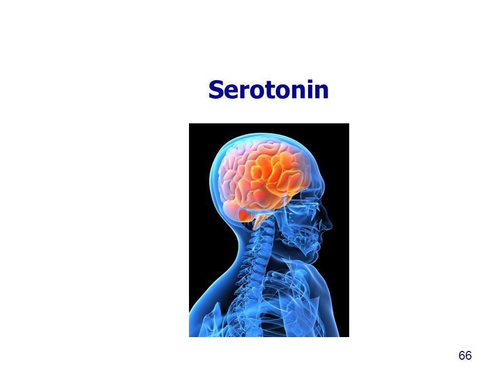 Serotonin 66