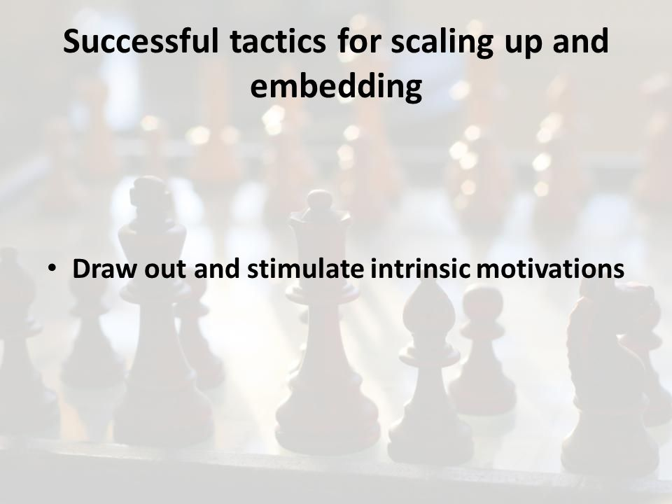 Draw out and stimulate intrinsic motivations Successful tactics for scaling up and embedding