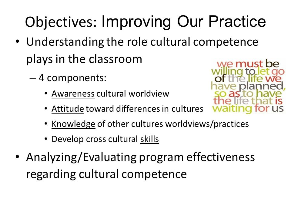 Objectives: Improving Our Practice Understanding the role cultural competence plays in the classroom – 4 components: Awareness cultural worldview Attitude toward differences in cultures Knowledge of other cultures worldviews/practices Develop cross cultural skills Analyzing/Evaluating program effectiveness regarding cultural competence