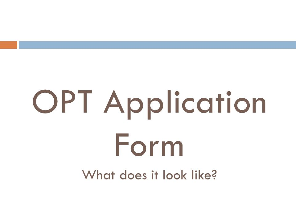 OPT Application Form What does it look like?
