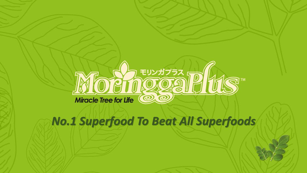 MoringgaPlus.com Miracle Tree for Life No.1 Superfood To Beat All Superfoods