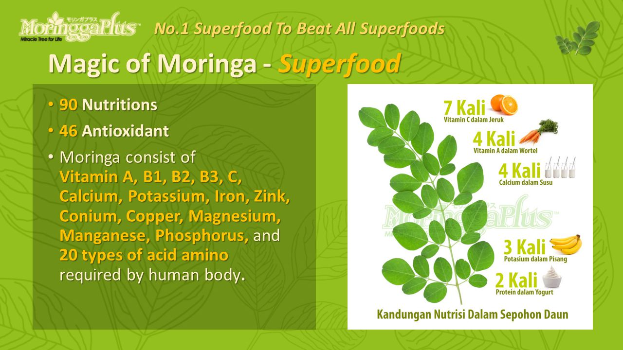 Magic of Moringa - Superfood 90 Nutritions 90 Nutritions 46 Antioxidant 46 Antioxidant Moringa consist of Vitamin A, B1, B2, B3, C, Calcium, Potassium, Iron, Zink, Conium, Copper, Magnesium, Manganese, Phosphorus, and 20 types of acid amino required by human body.
