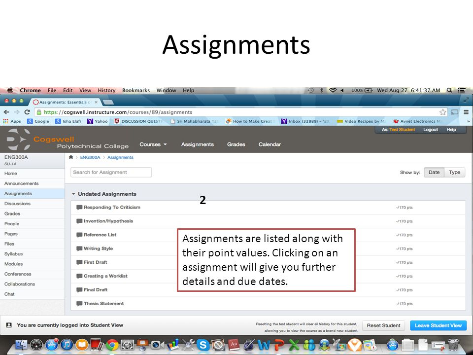 Assignments 2 Assignments are listed along with their point values. Clicking on an assignment will give you further details and due dates.