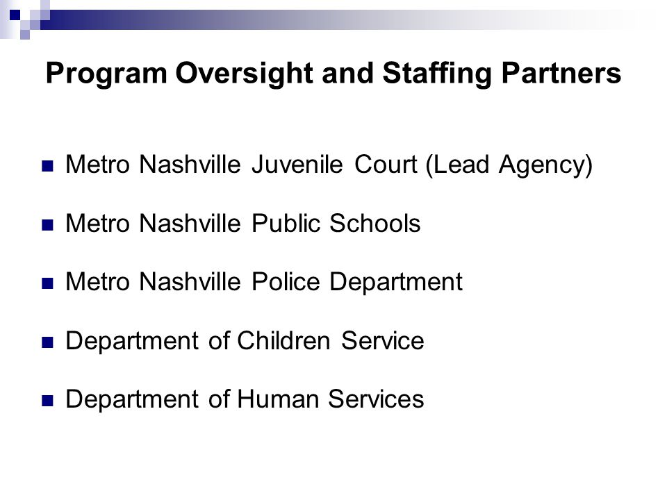 Metro Nashville Juvenile Court (Lead Agency) Metro Nashville Public Schools Metro Nashville Police Department Department of Children Service Department of Human Services Program Oversight and Staffing Partners