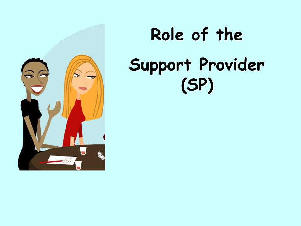 Role of the Support Provider (SP)