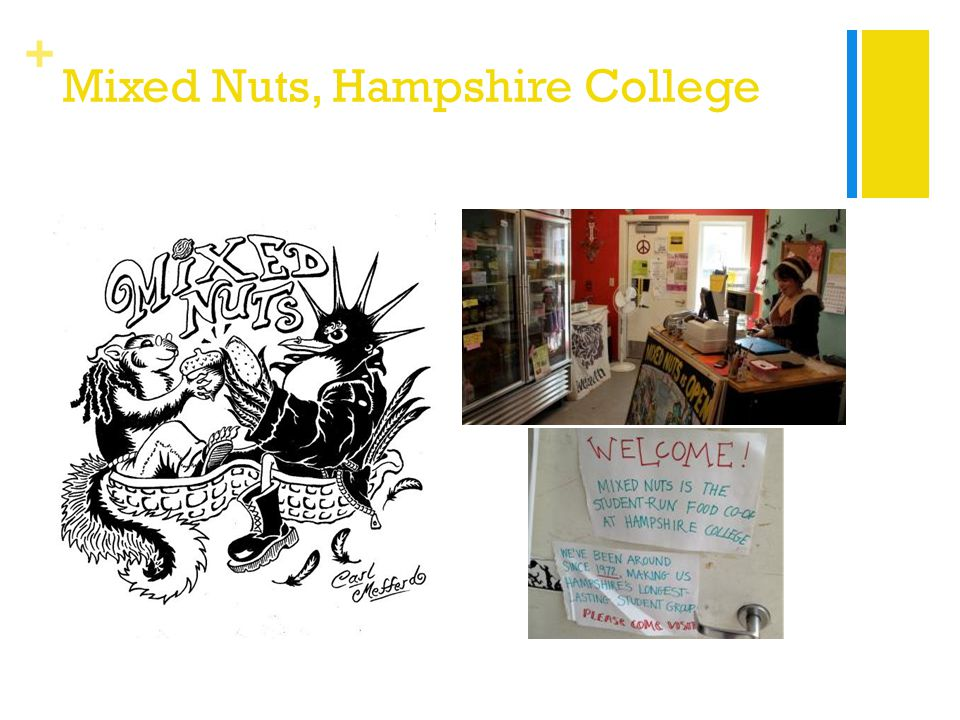 + Mixed Nuts, Hampshire College