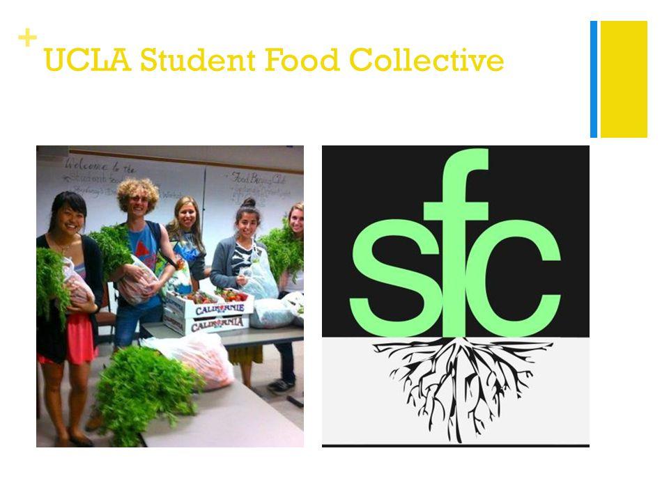 + UCLA Student Food Collective