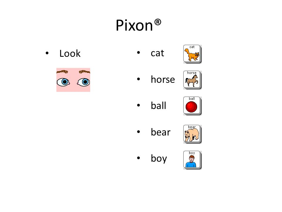 Pixon® Look cat horse ball bear boy