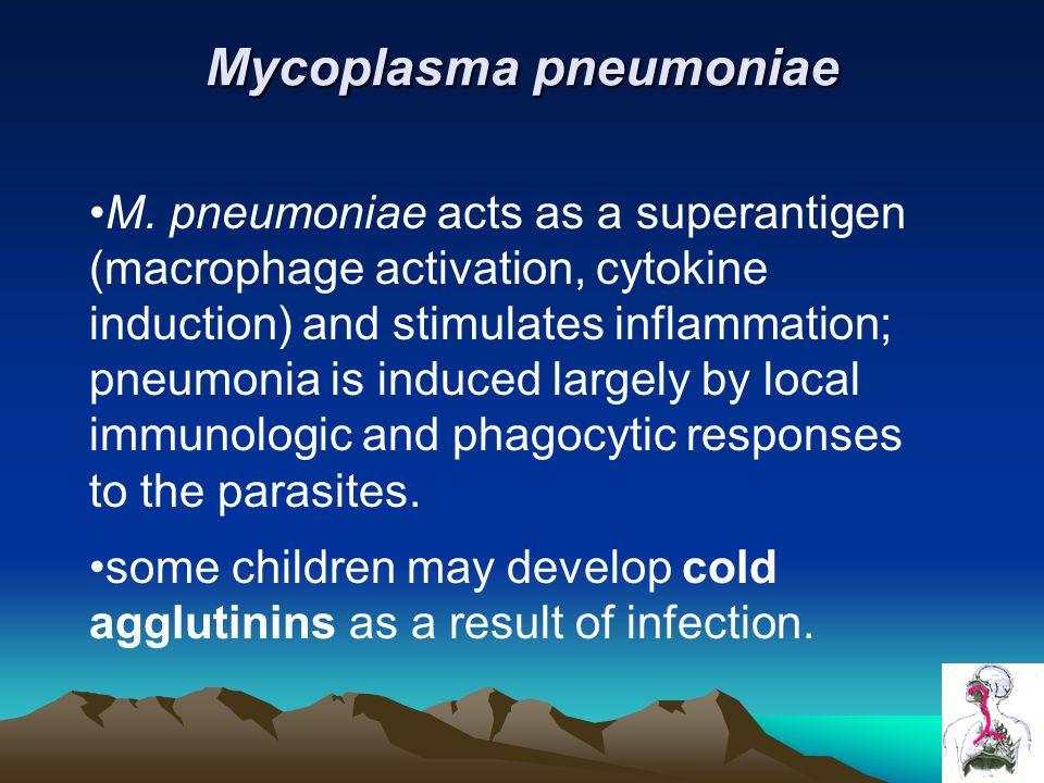 Mycoplasma pneumoniae M.