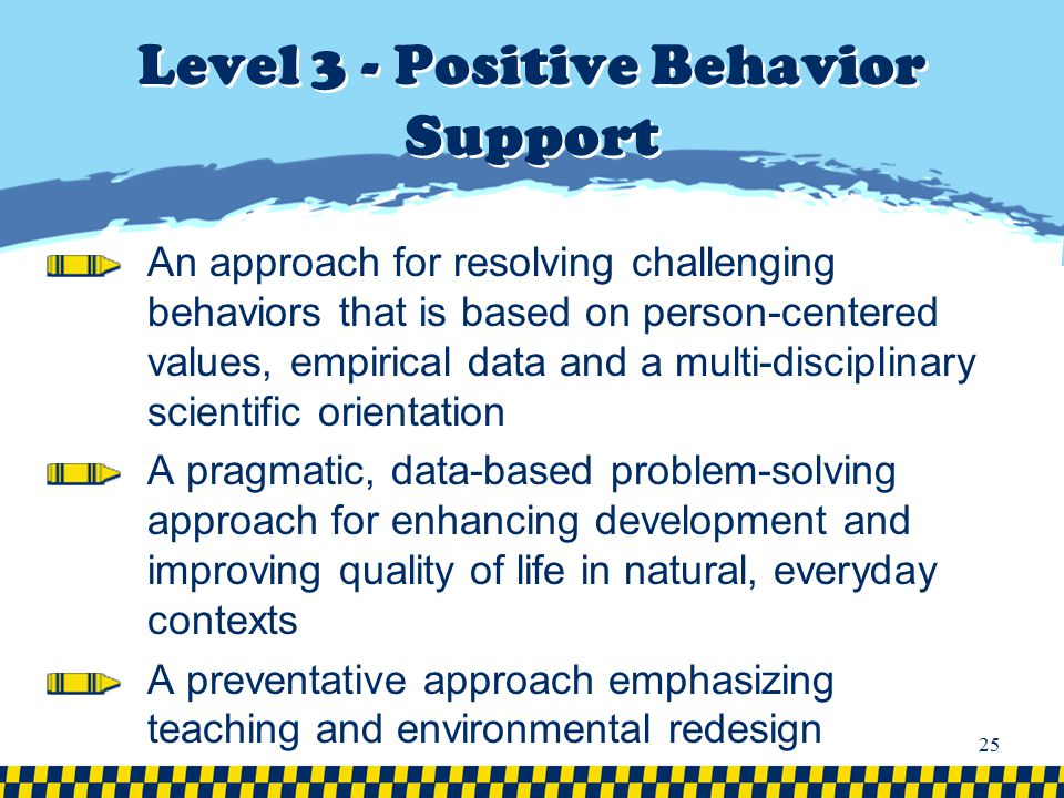 Level 3 - Positive Behavior Support An approach for resolving challenging behaviors that is based on person-centered values, empirical data and a mult