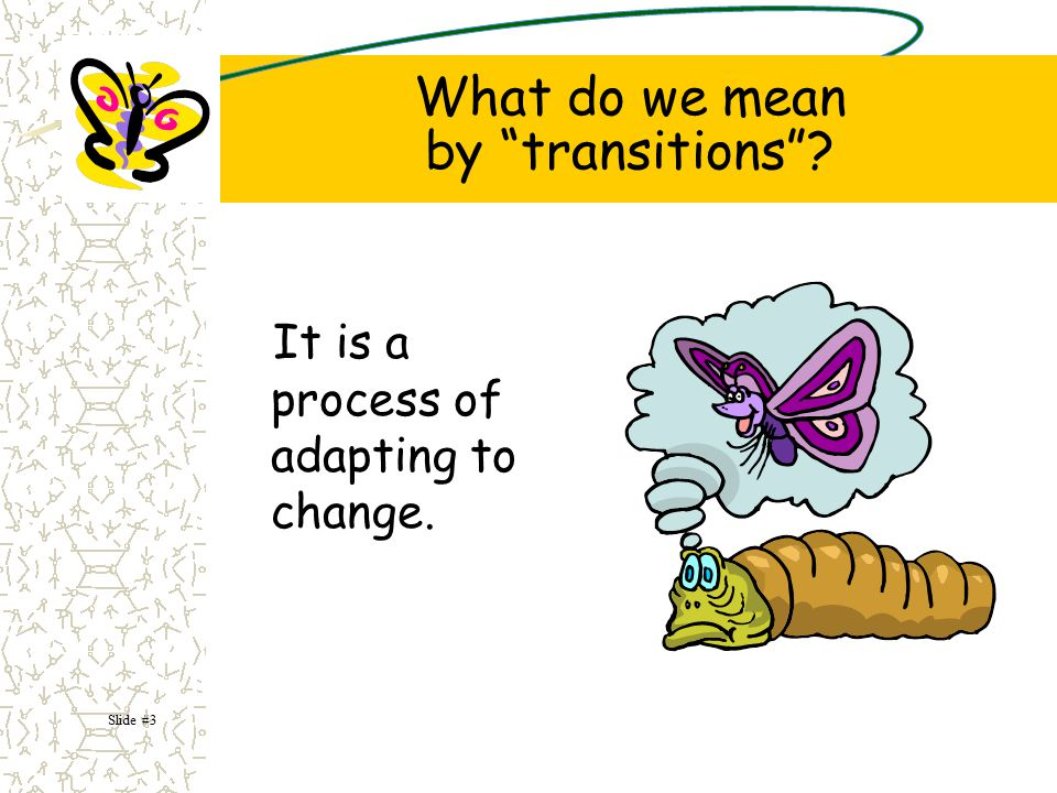 Children's success in school can be linked, in part, to effective transition practices and activities.