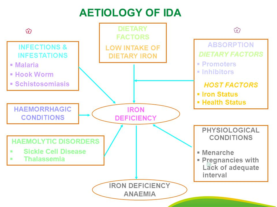 18 IRON DEFICIENCY DIETARY FACTORS LOW INTAKE OF DIETARY IRON INFECTIONS & INFESTATIONS  Malaria  Hook Worm  Schistosomiasis HAEMORRHAGIC CONDITIONS ABSORPTION DIETARY FACTORS  Promoters  Inhibitors HOST FACTORS  Iron Status  Health Status HAEMOLYTIC DISORDERS  Sickle Cell Disease  Thalassemia AETIOLOGY OF IDA IRON DEFICIENCY ANAEMIA PHYSIOLOGICAL CONDITIONS  Menarche  Pregnancies with Lack of adequate interval