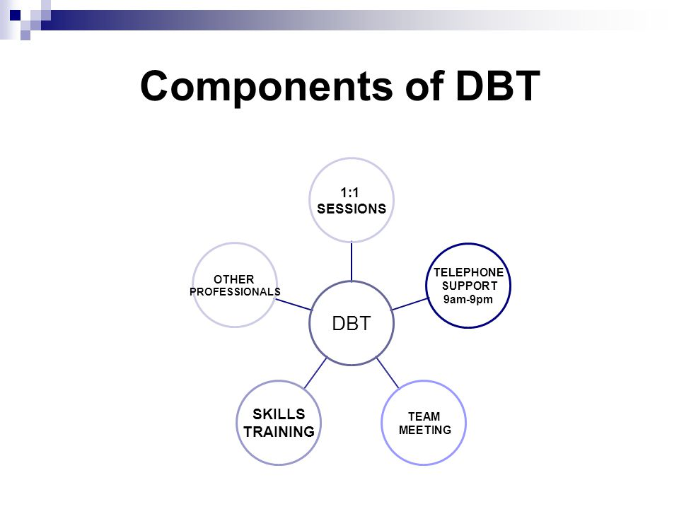 Components of DBT