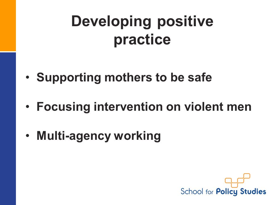 Developing positive practice Supporting mothers to be safe Focusing intervention on violent men Multi-agency working