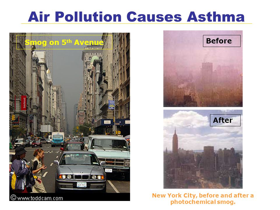Air Pollution Causes Asthma New York City, before and after a photochemical smog.
