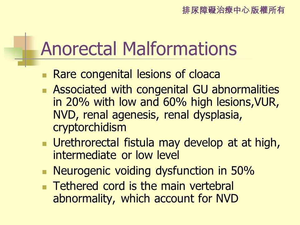 排尿障礙治療中心 版權所有 Anorectal Malformations Rare congenital lesions of cloaca Associated with congenital GU abnormalities in 20% with low and 60% high lesions,VUR, NVD, renal agenesis, renal dysplasia, cryptorchidism Urethrorectal fistula may develop at at high, intermediate or low level Neurogenic voiding dysfunction in 50% Tethered cord is the main vertebral abnormality, which account for NVD