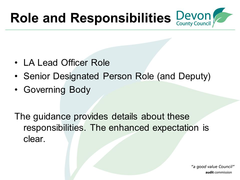 Role and Responsibilities LA Lead Officer Role Senior Designated Person Role (and Deputy) Governing Body The guidance provides details about these res