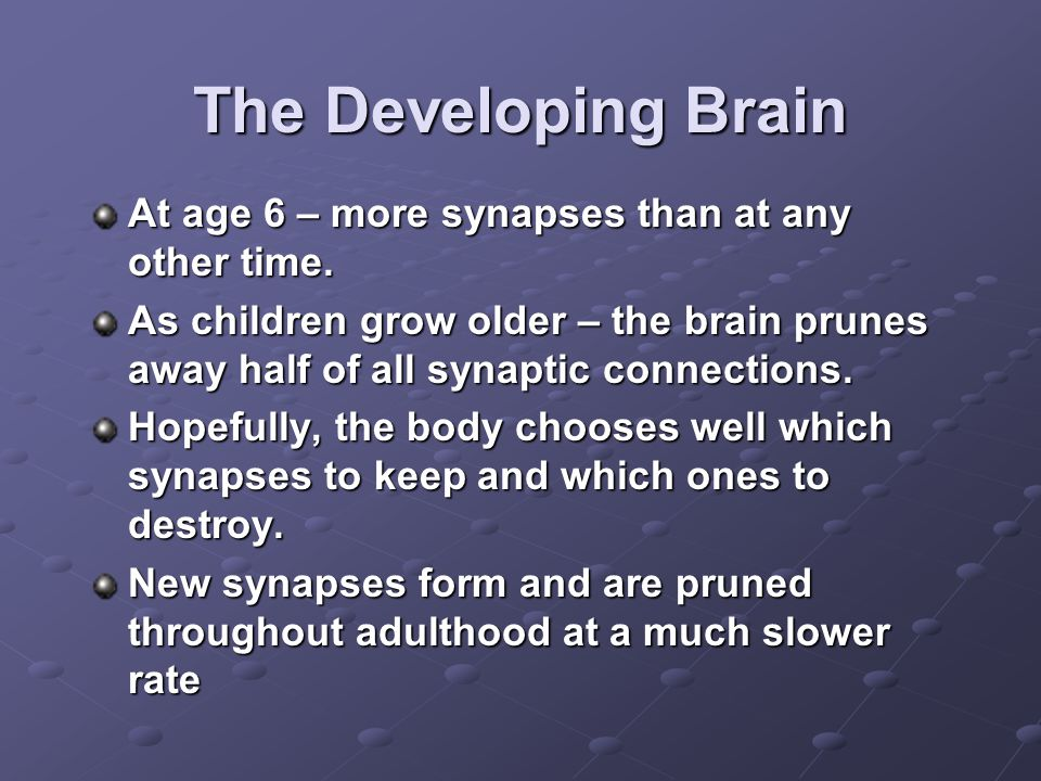 The Developing Brain At age 6 – more synapses than at any other time.