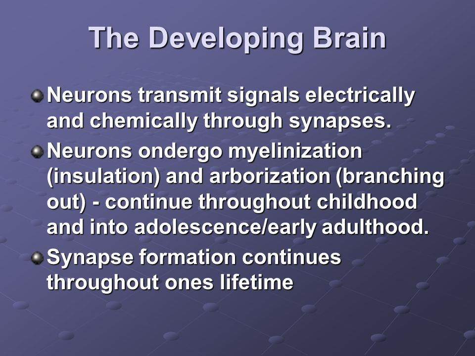 The Developing Brain Neurons transmit signals electrically and chemically through synapses.