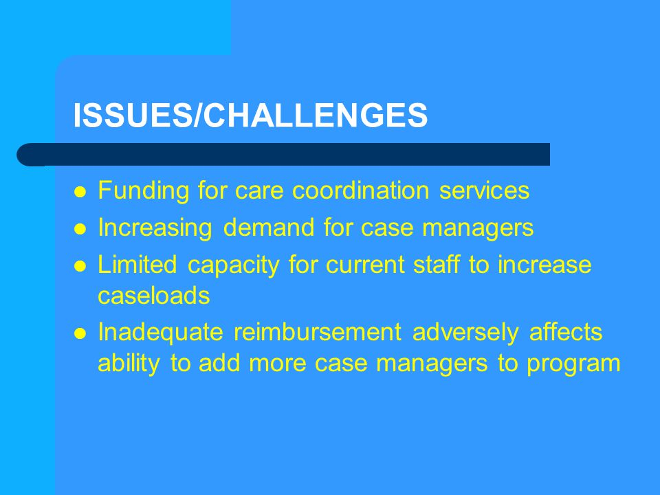 ISSUES/CHALLENGES Funding for care coordination services Increasing demand for case managers Limited capacity for current staff to increase caseloads