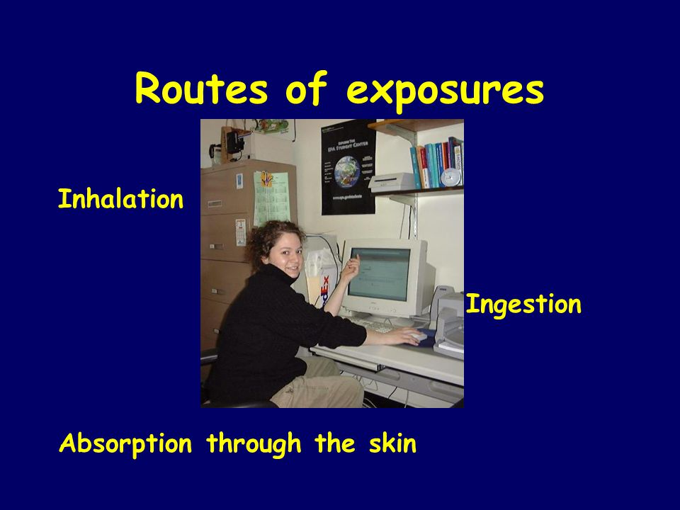 Routes of exposures Inhalation Ingestion Absorption through the skin