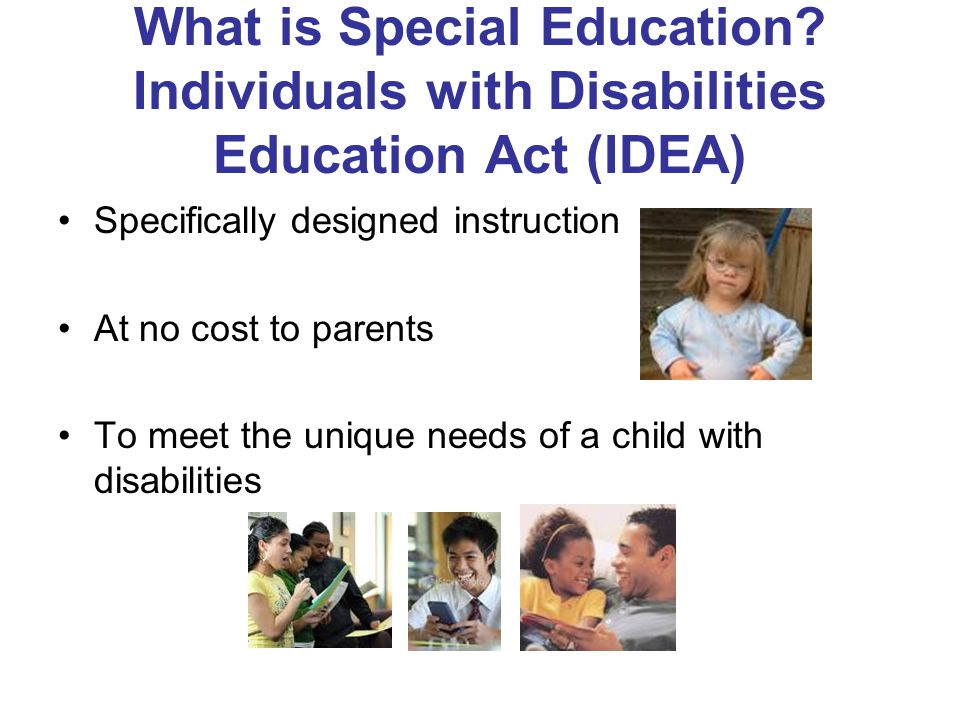 The Legal Foundations for Special Education in Virginia The Individuals with Disabilities Education Improvement Act (IDEA) 2004 The Virginia Special Education Regulations (2009)