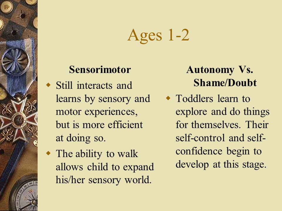 Ages 1-2 Sensorimotor  Still interacts and learns by sensory and motor experiences, but is more efficient at doing so.