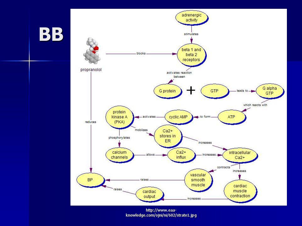 http://www.eaa- knowledge.com/ojni/ni/602/strate1.jpg BB