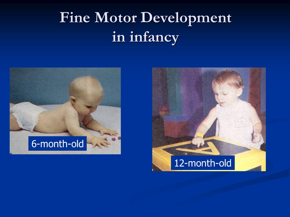 Fine Motor Development in infancy 6-month-old 12-month-old