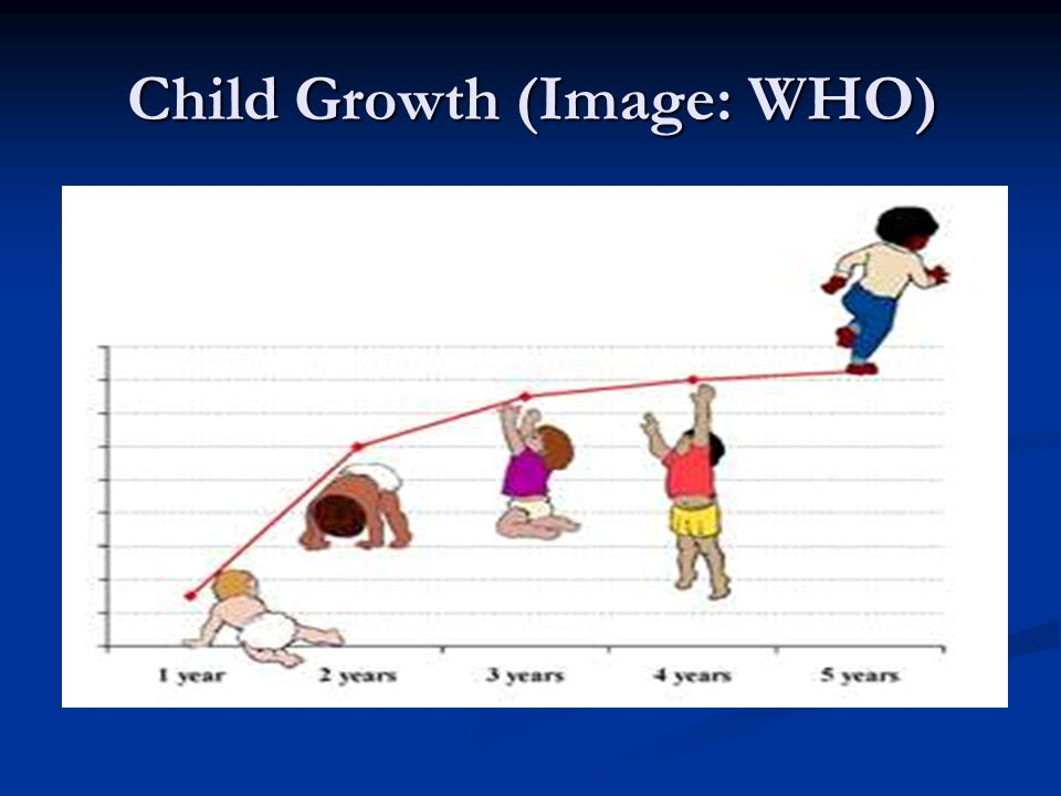 Changes in bodily proportions with age.