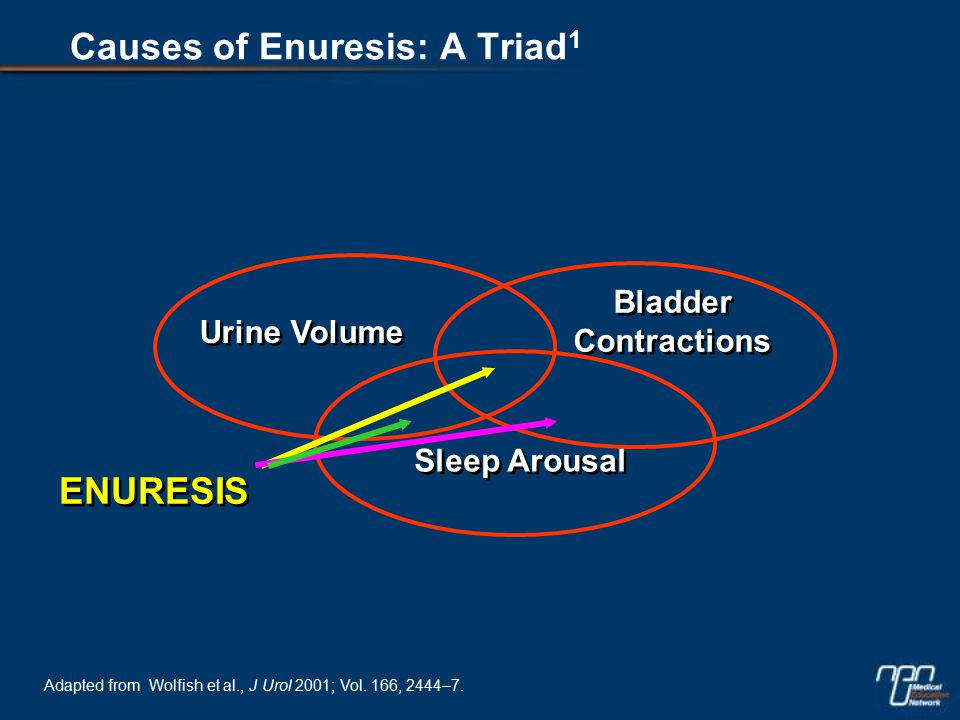 Urine Volume Bladder Contractions Sleep Arousal ENURESIS Adapted from Wolfish et al., J Urol 2001; Vol.