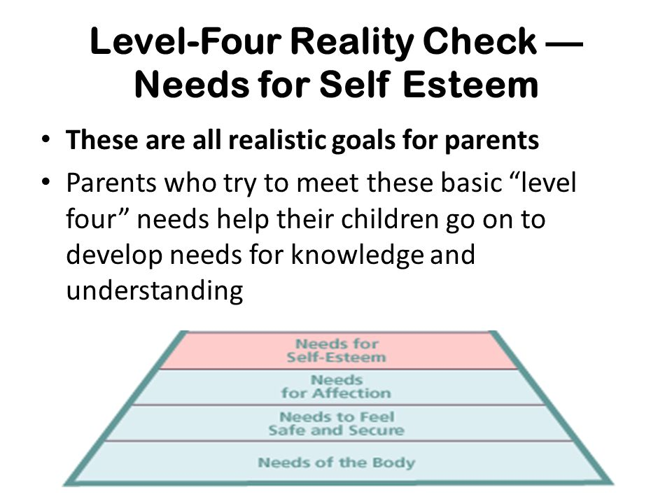 """Level-Four Reality Check — Needs for Self Esteem These are all realistic goals for parents Parents who try to meet these basic """"level four"""" needs help"""
