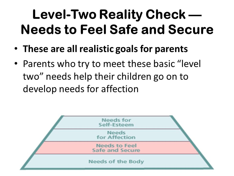 """Level-Two Reality Check — Needs to Feel Safe and Secure These are all realistic goals for parents Parents who try to meet these basic """"level two"""" need"""